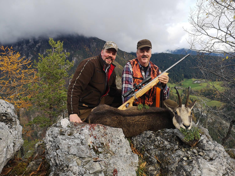 Glada jägare i Slovenien